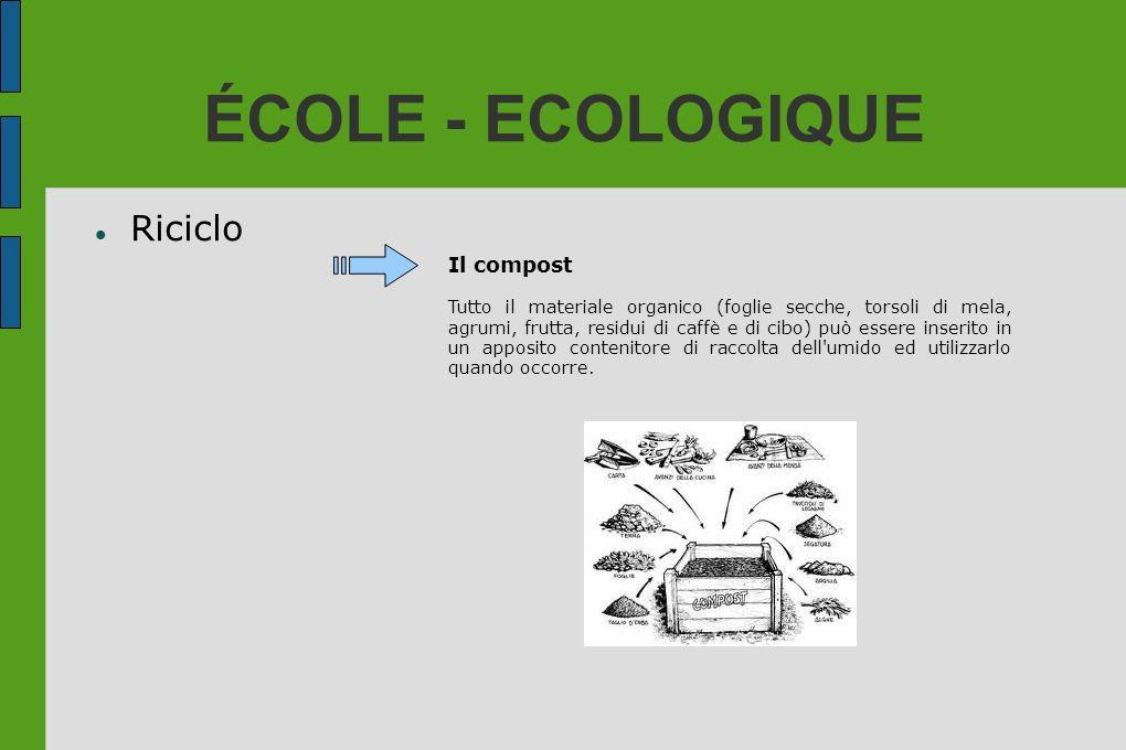 ÉCOLE - ECOLOGIQUE Riciclo Il compost