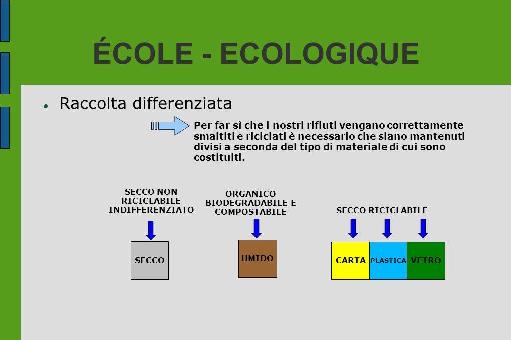 ÉCOLE - ECOLOGIQUE Raccolta differenziata