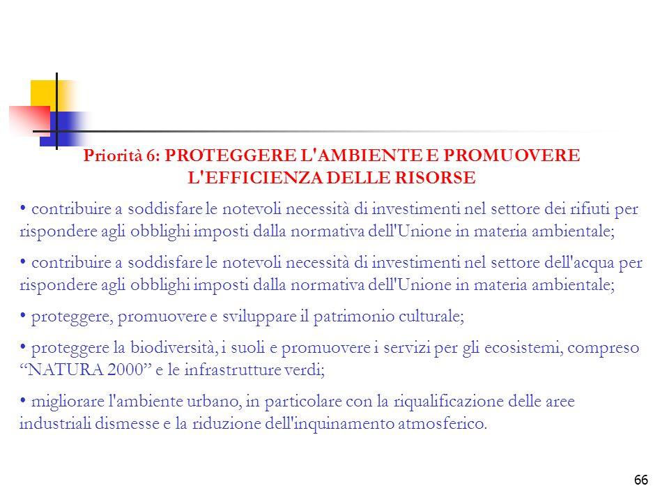Priorità 6: PROTEGGERE L AMBIENTE E PROMUOVERE L EFFICIENZA DELLE RISORSE
