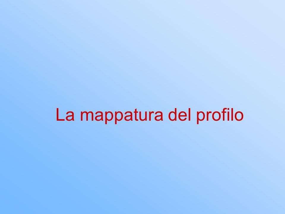 La mappatura del profilo