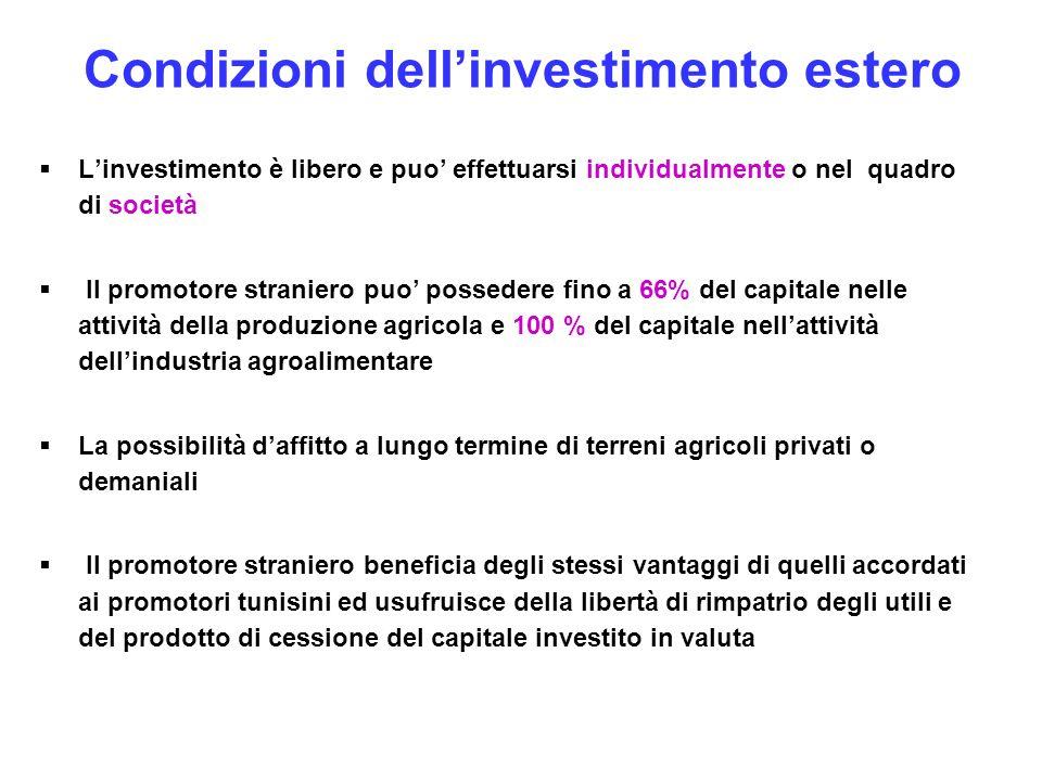 Condizioni dell'investimento estero