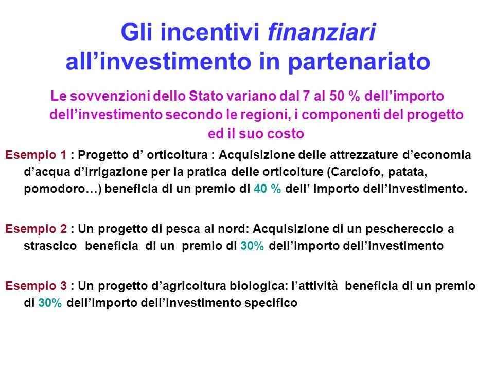 Gli incentivi finanziari all'investimento in partenariato