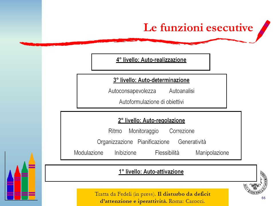 Le funzioni esecutive Tratta da Fedeli (in press).