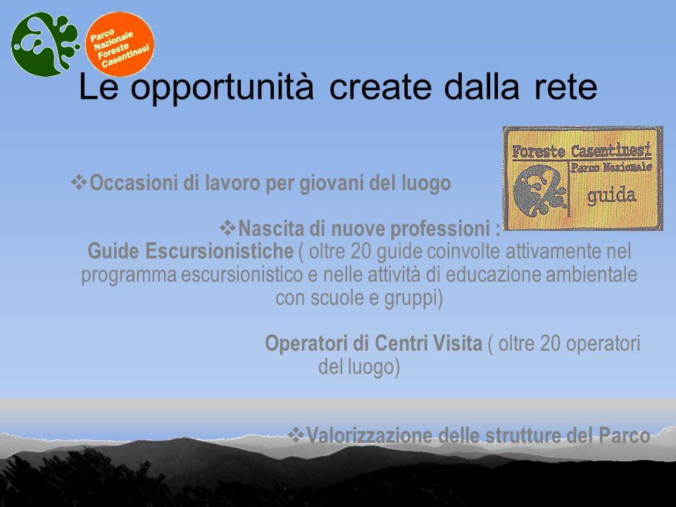 Le opportunità create dalla rete