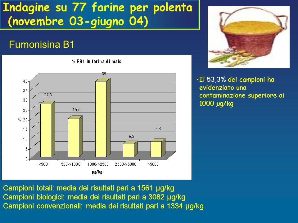 Indagine su 77 farine per polenta (novembre 03-giugno 04)