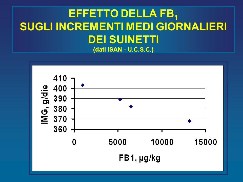 EFFETTO DELLA FB1 SUGLI INCREMENTI MEDI GIORNALIERI DEI SUINETTI (dati ISAN - U.C.S.C.)
