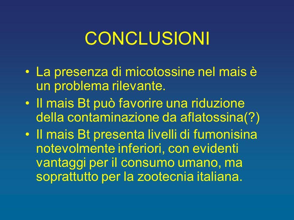 CONCLUSIONI La presenza di micotossine nel mais è un problema rilevante.