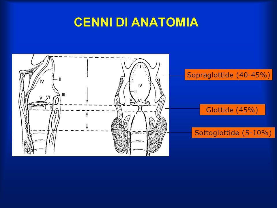 CENNI DI ANATOMIA Sopraglottide (40-45%) Glottide (45%)