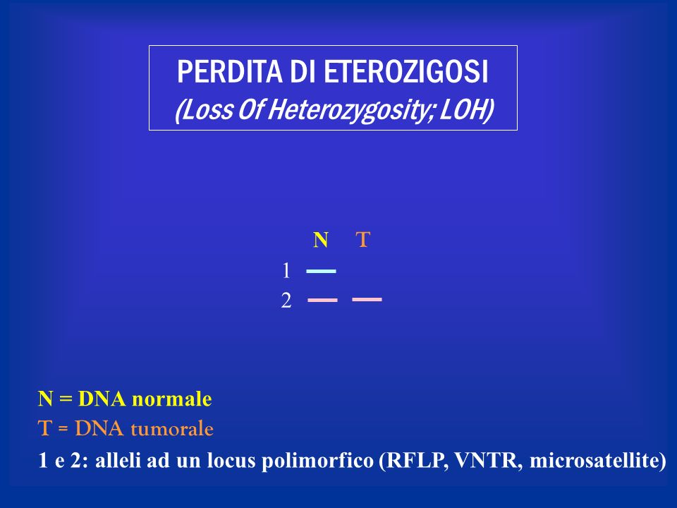 PERDITA DI ETEROZIGOSI (Loss Of Heterozygosity; LOH)