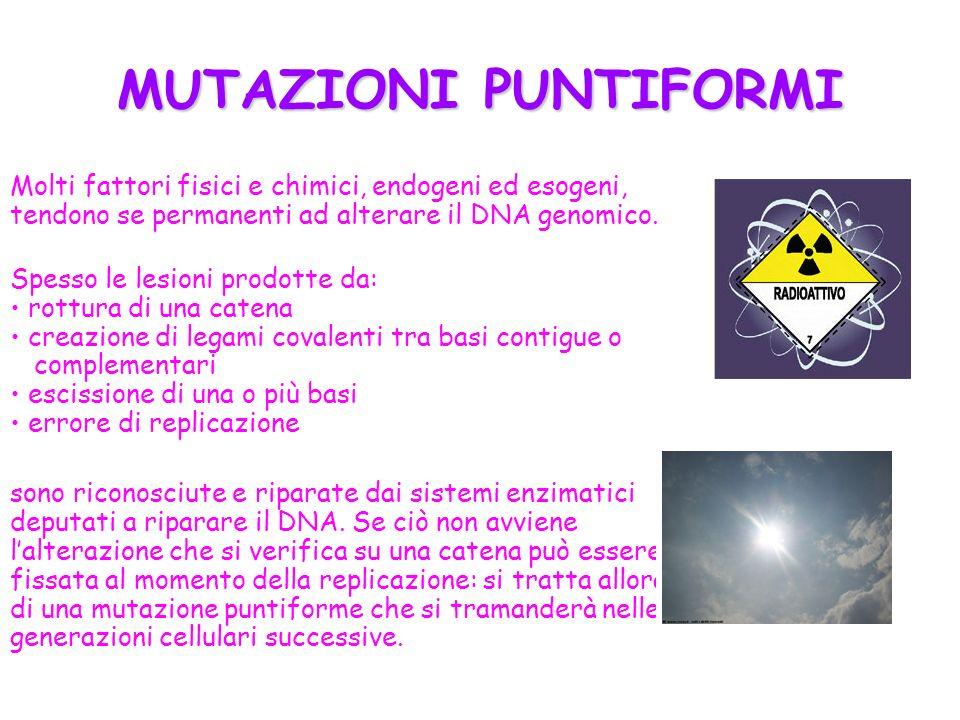 MUTAZIONI PUNTIFORMI Molti fattori fisici e chimici, endogeni ed esogeni, tendono se permanenti ad alterare il DNA genomico.