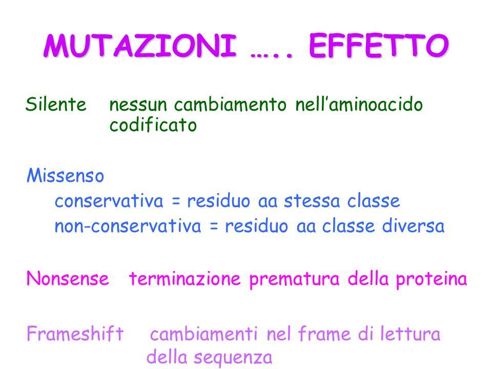 MUTAZIONI ….. EFFETTO Silente nessun cambiamento nell'aminoacido codificato. Missenso. conservativa = residuo aa stessa classe.