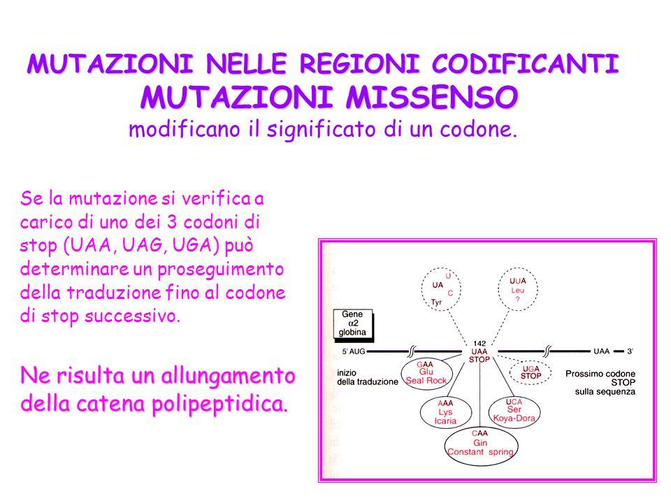MUTAZIONI NELLE REGIONI CODIFICANTI MUTAZIONI MISSENSO modificano il significato di un codone.