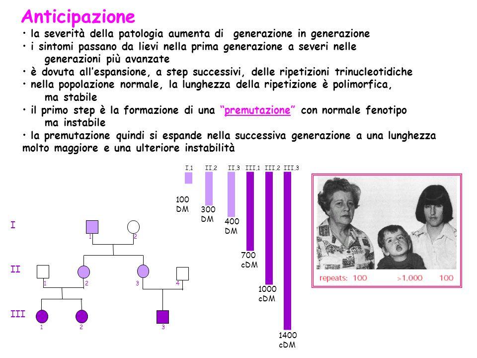 Anticipazione la severità della patologia aumenta di generazione in generazione. i sintomi passano da lievi nella prima generazione a severi nelle.
