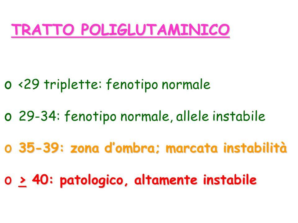 TRATTO POLIGLUTAMINICO