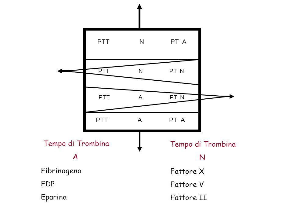 Tempo di Trombina Tempo di Trombina A N Fibrinogeno Fattore X FDP