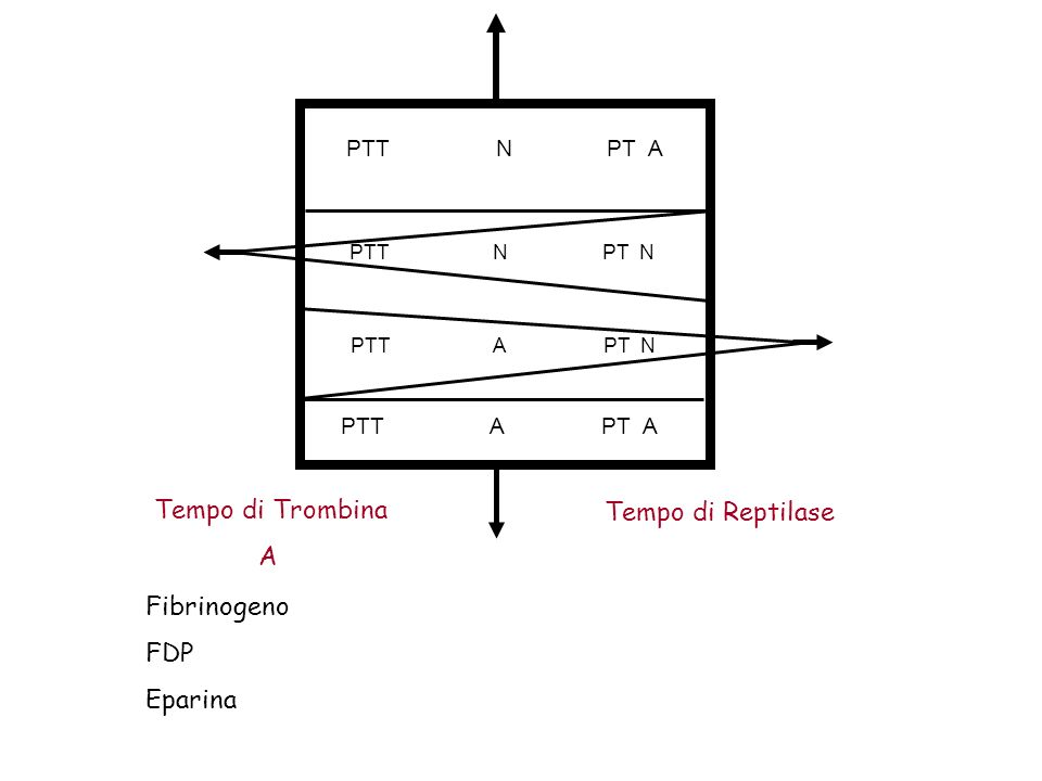 Tempo di Trombina Tempo di Reptilase A Fibrinogeno FDP Eparina