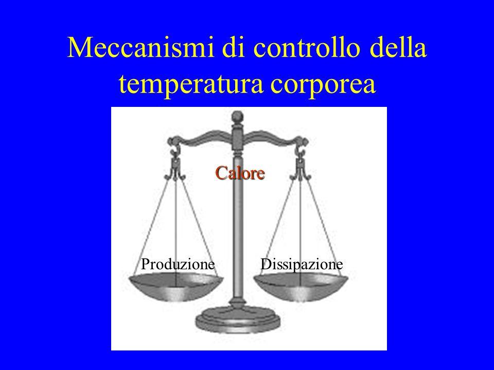 Meccanismi di controllo della temperatura corporea