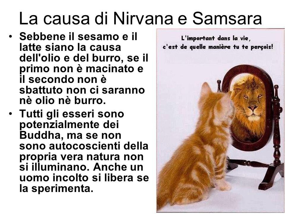 La causa di Nirvana e Samsara