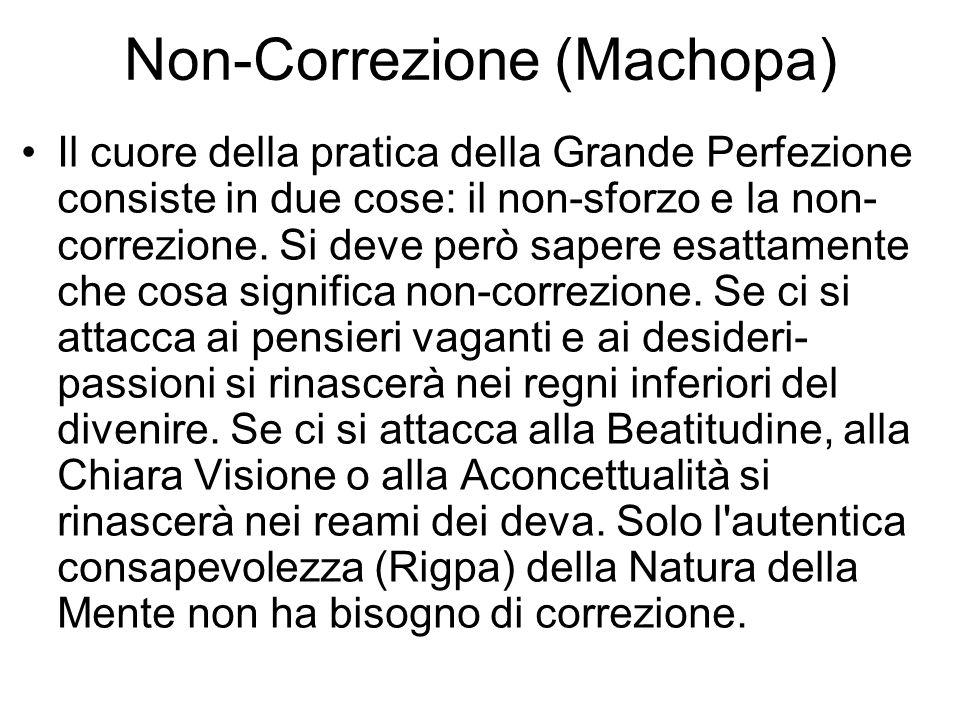 Non-Correzione (Machopa)