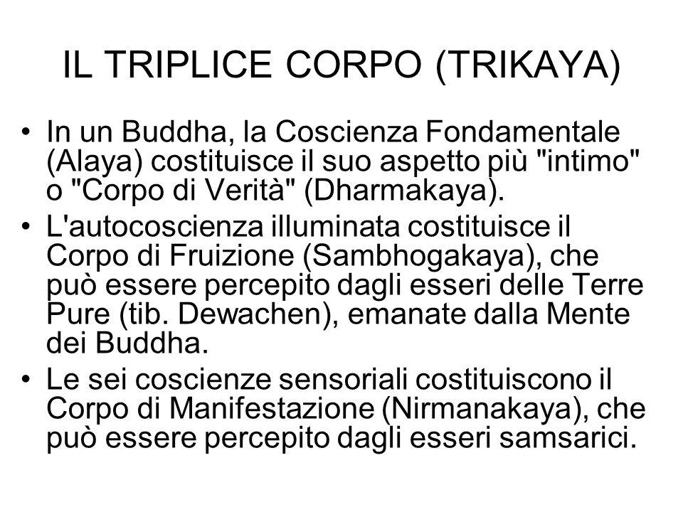 IL TRIPLICE CORPO (TRIKAYA)