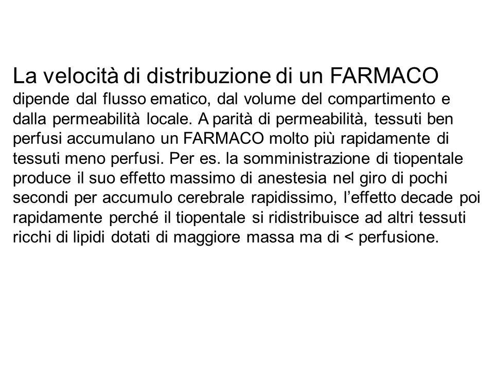 La velocità di distribuzione di un FARMACO dipende dal flusso ematico, dal volume del compartimento e dalla permeabilità locale.