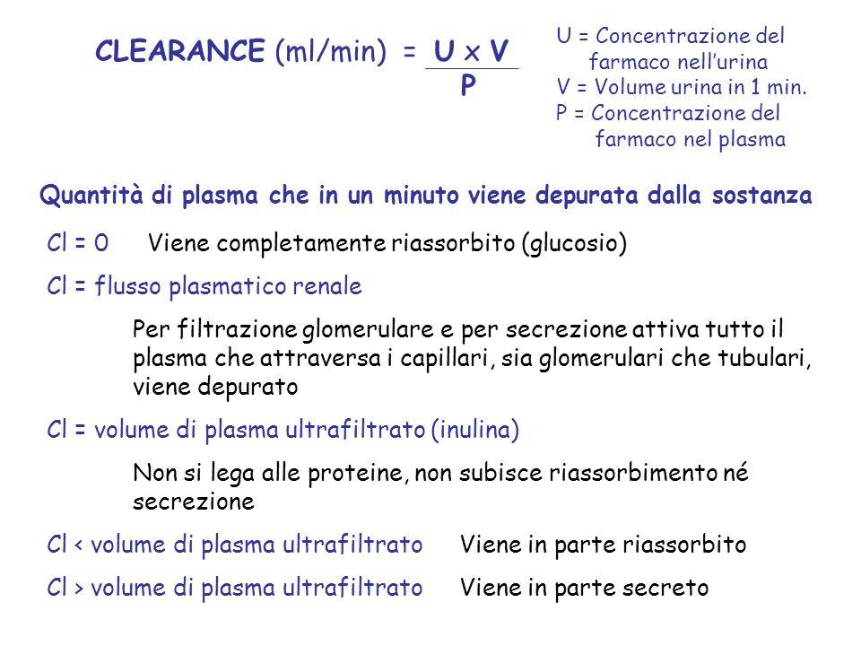 CLEARANCE (ml/min) = U x V P