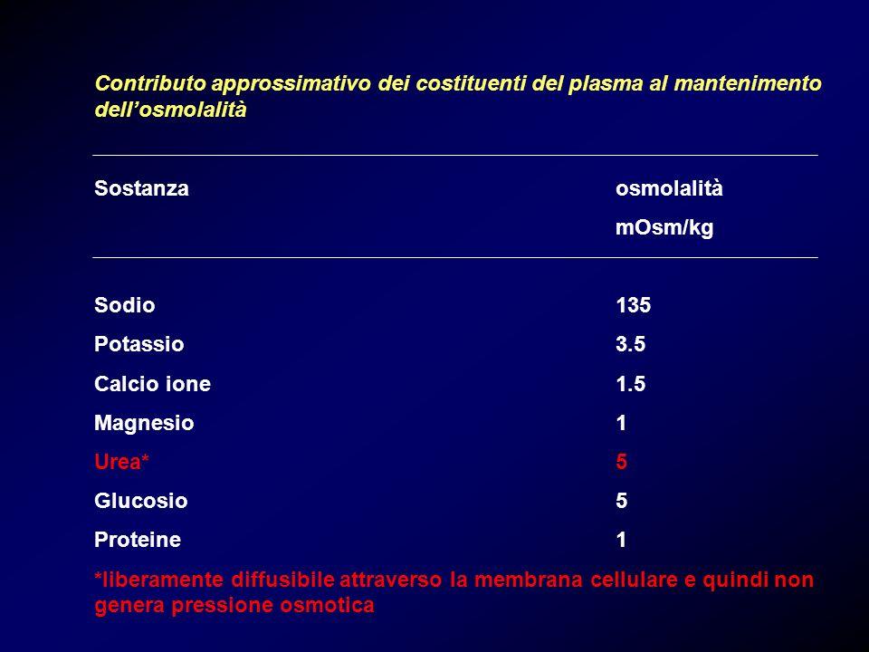 Contributo approssimativo dei costituenti del plasma al mantenimento dell'osmolalità