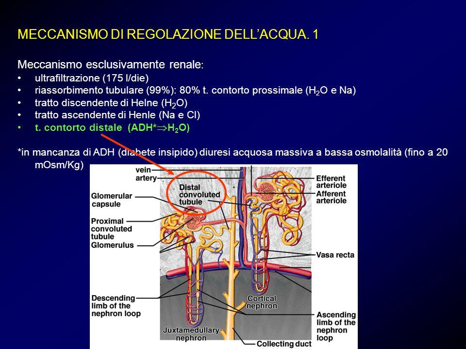 MECCANISMO DI REGOLAZIONE DELL'ACQUA. 1