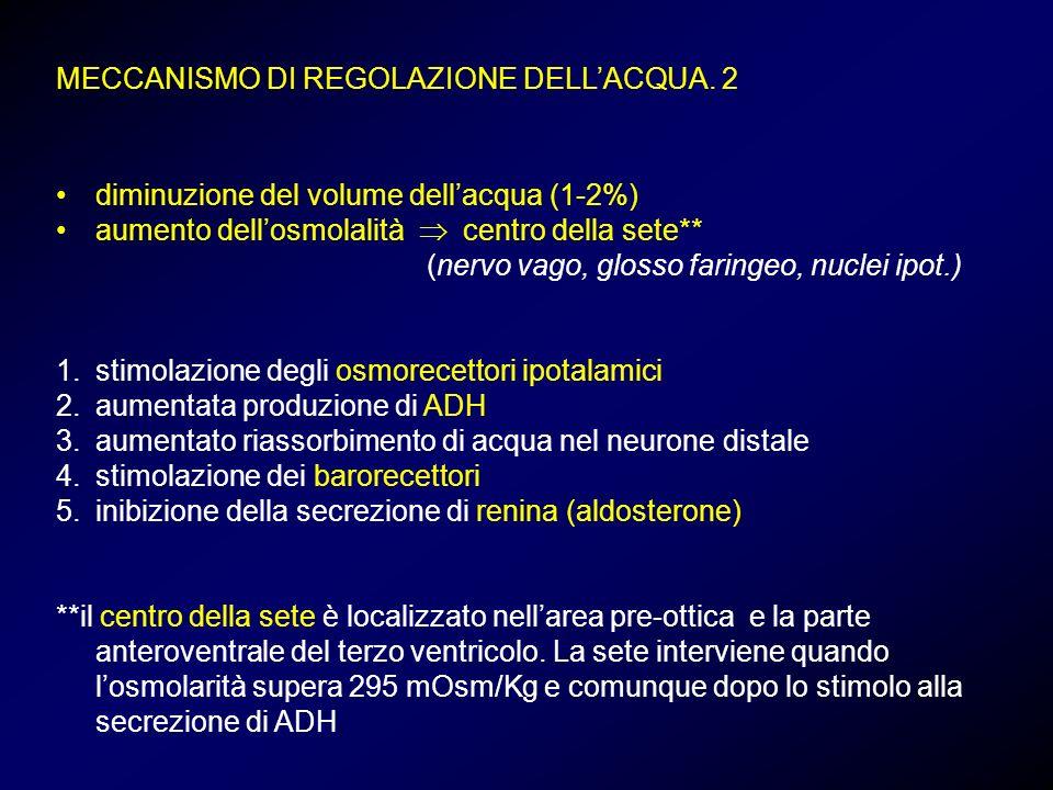 MECCANISMO DI REGOLAZIONE DELL'ACQUA. 2