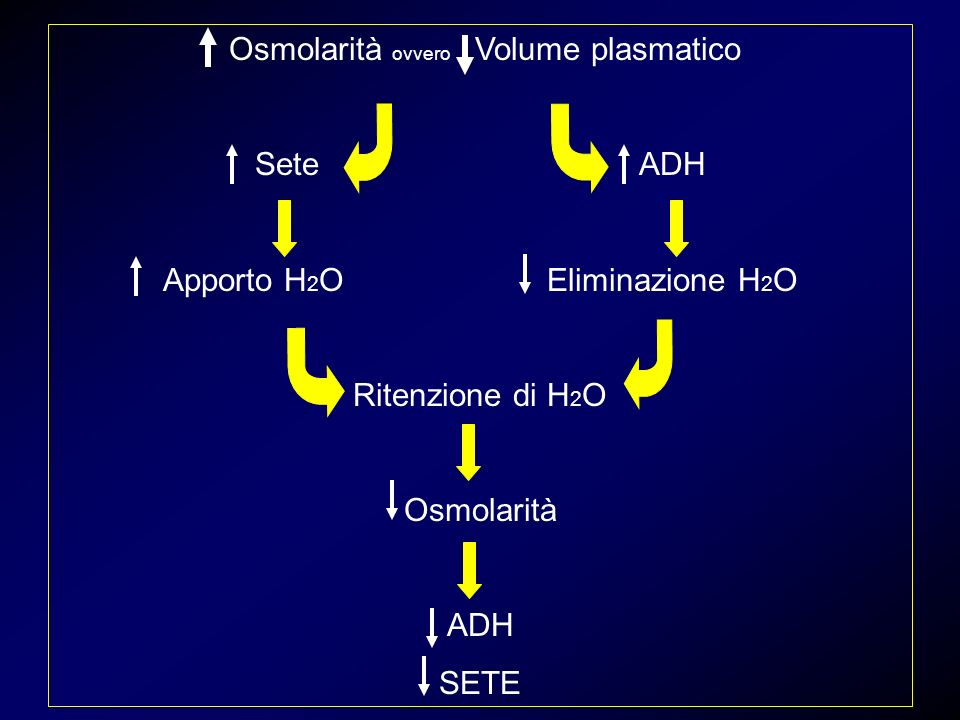 Osmolarità ovvero Volume plasmatico