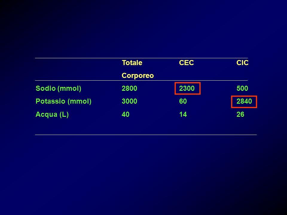 Totale CEC CIC Corporeo. Sodio (mmol) 2800 2300 500.