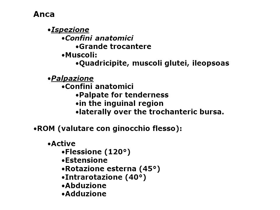 Anca Ispezione Confini anatomici Grande trocantere Muscoli: