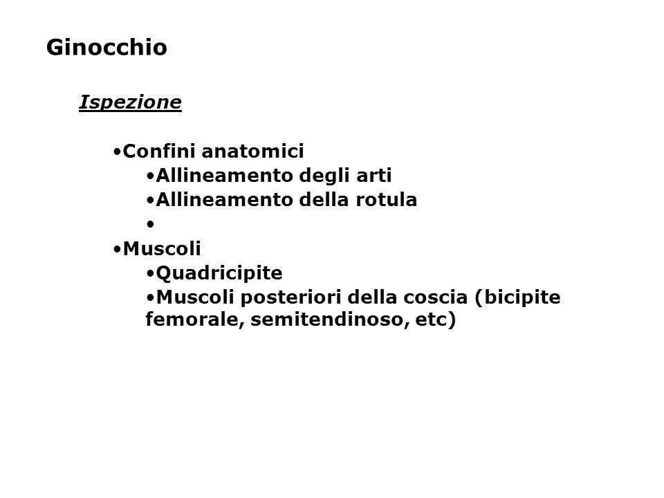Ginocchio Ispezione Confini anatomici Allineamento degli arti