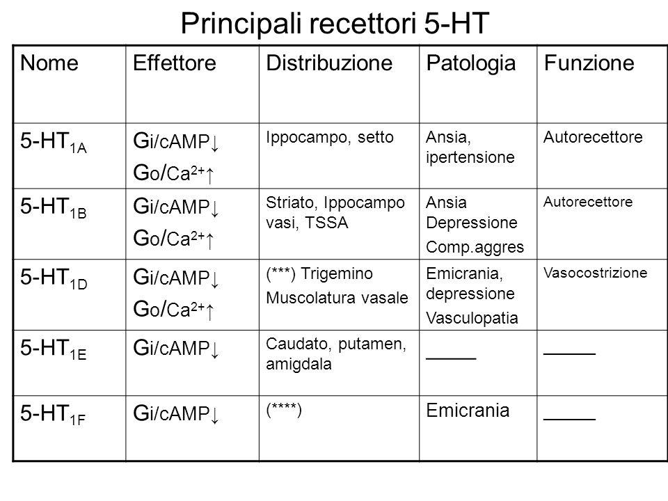 Principali recettori 5-HT