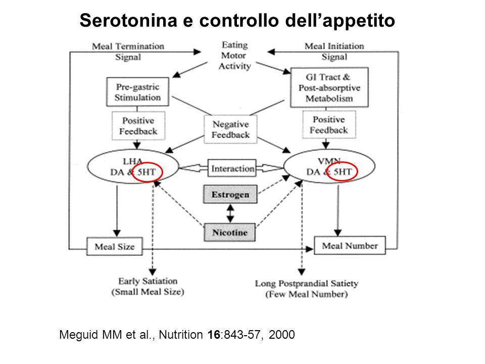 Serotonina e controllo dell'appetito