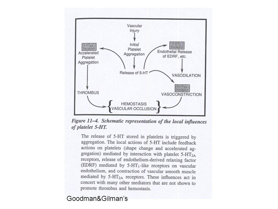 Goodman&Gilman's