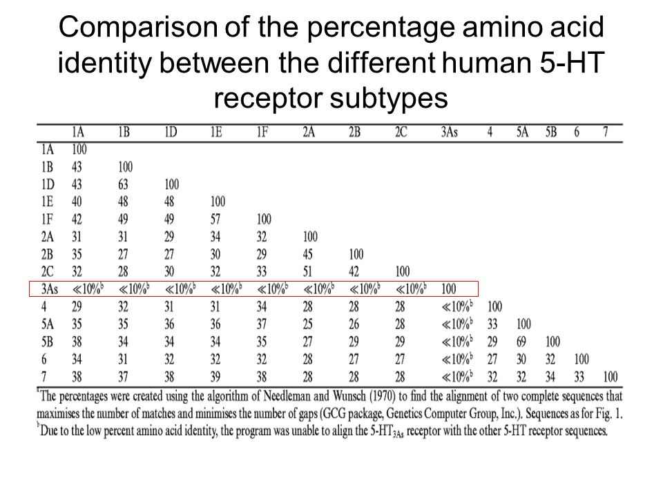 Comparison of the percentage amino acid identity between the different human 5-HT receptor subtypes