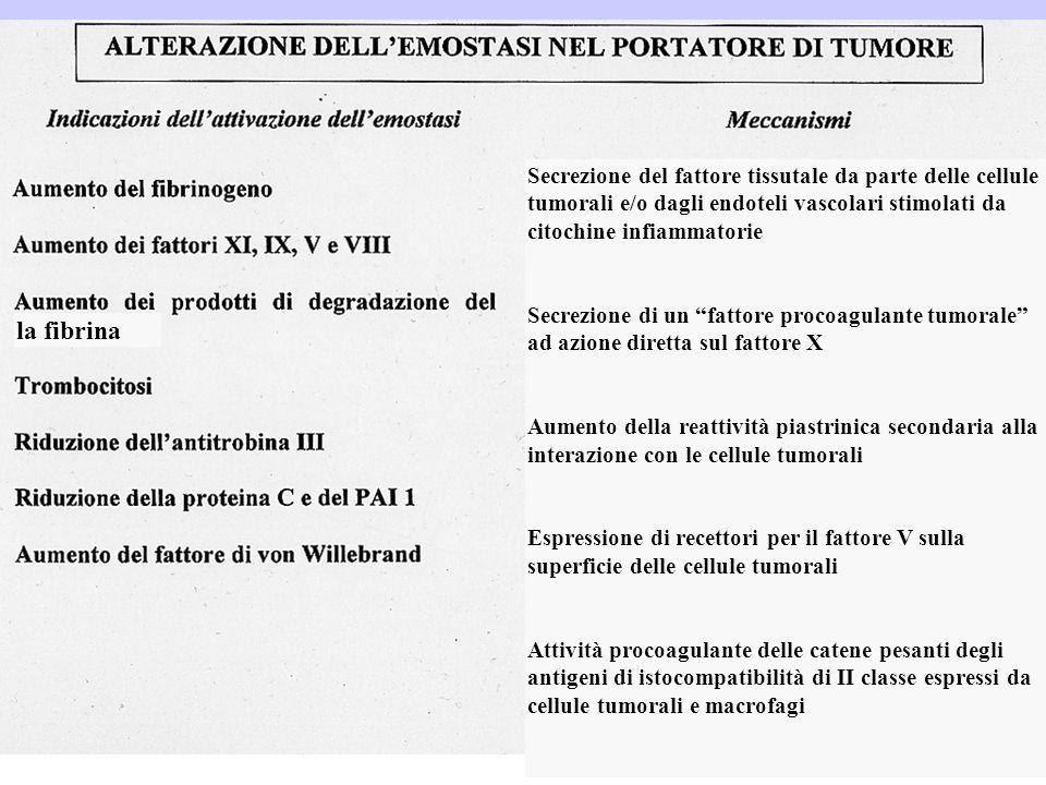 Secrezione del fattore tissutale da parte delle cellule tumorali e/o dagli endoteli vascolari stimolati da citochine infiammatorie