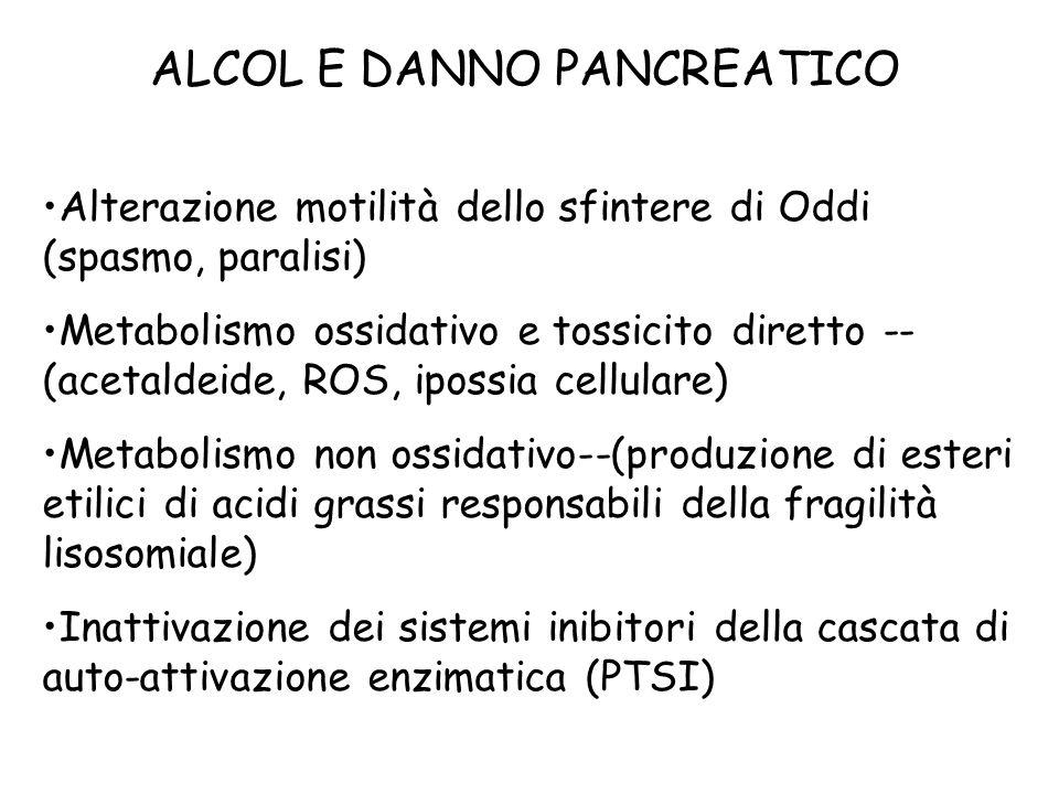 ALCOL E DANNO PANCREATICO