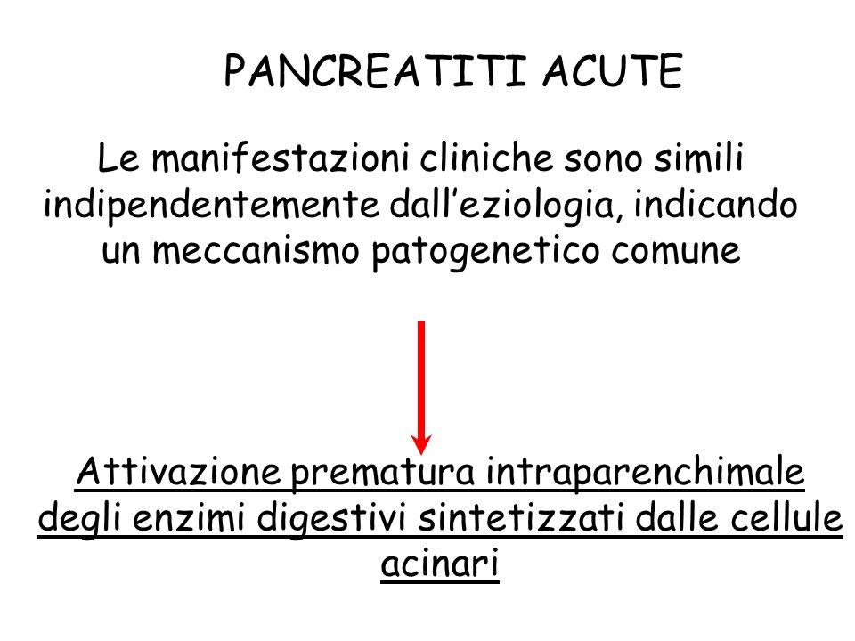 PANCREATITI ACUTE Le manifestazioni cliniche sono simili indipendentemente dall'eziologia, indicando un meccanismo patogenetico comune.