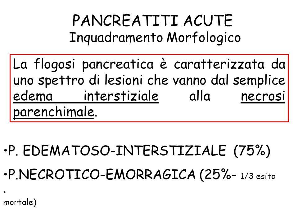 Inquadramento Morfologico