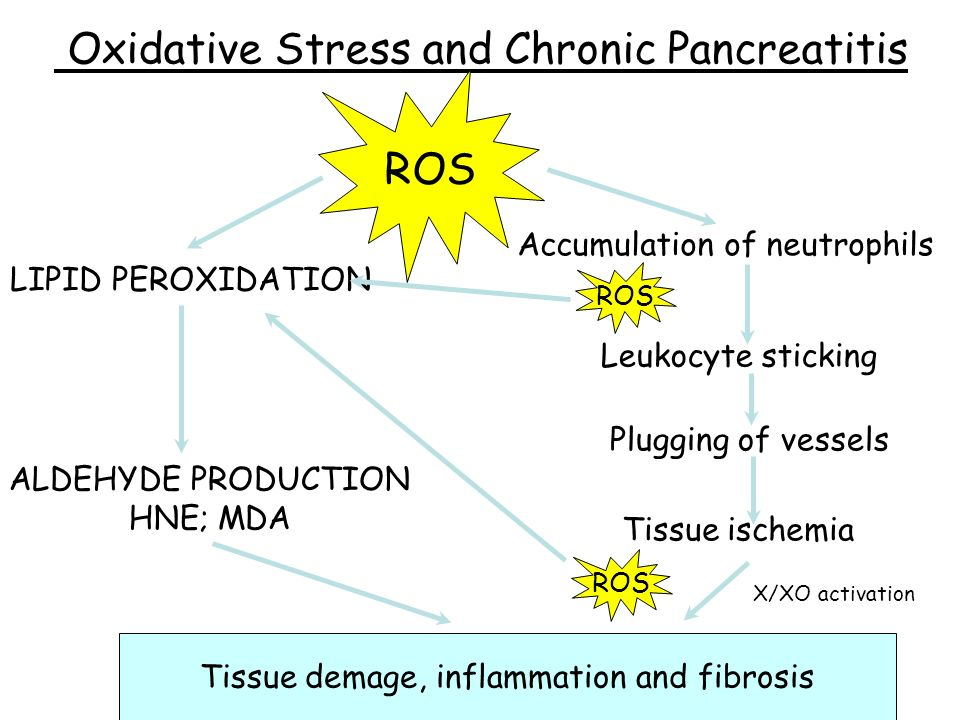 Oxidative Stress and Chronic Pancreatitis