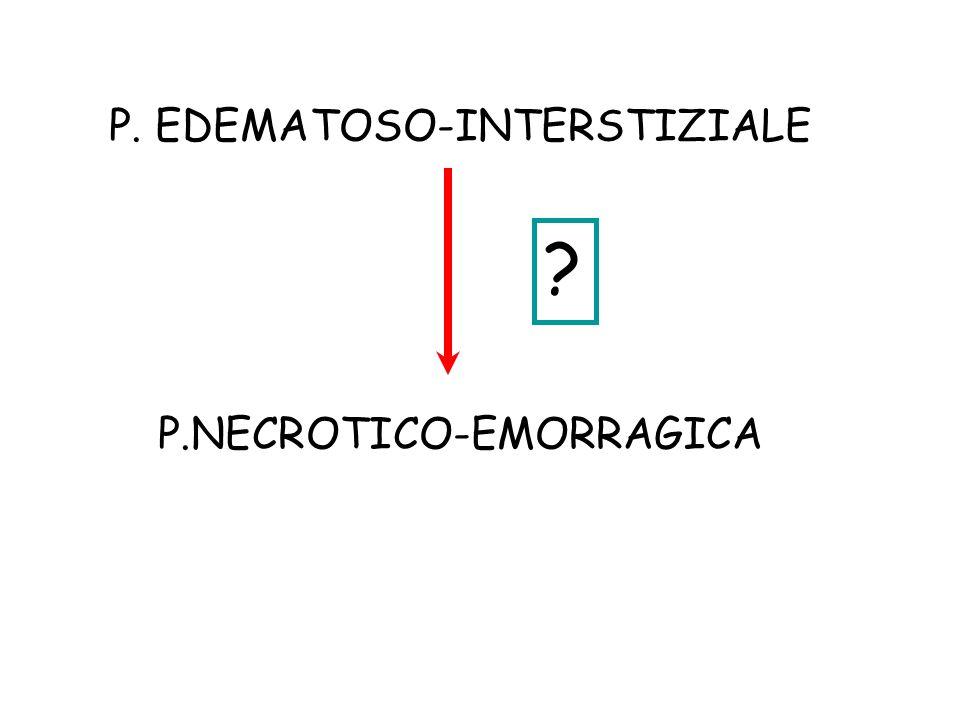 P. EDEMATOSO-INTERSTIZIALE