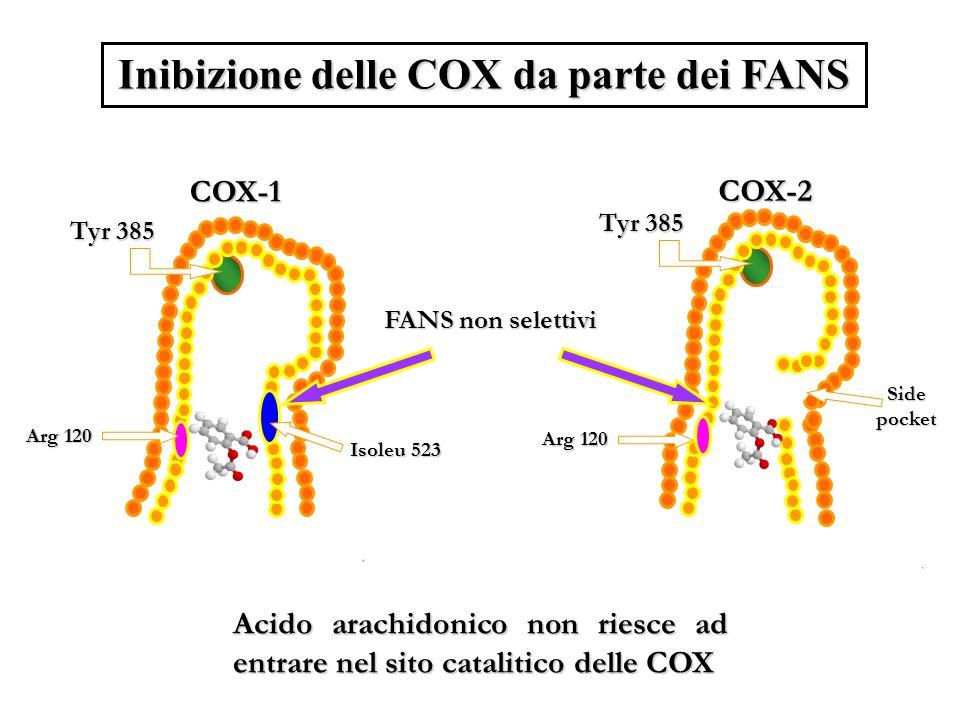 Inibizione delle COX da parte dei FANS