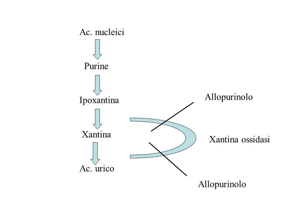 Ac. nucleici Purine Ipoxantina Xantina Ac. urico Allopurinolo Xantina ossidasi Allopurinolo