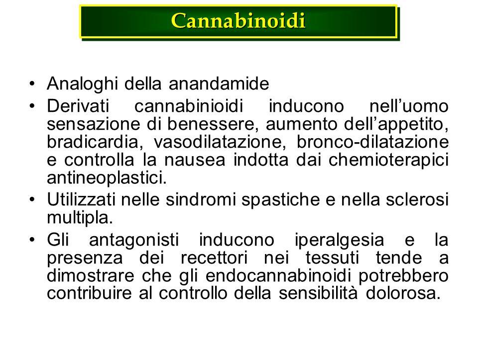 Cannabinoidi Cannabinoidi Analoghi della anandamide