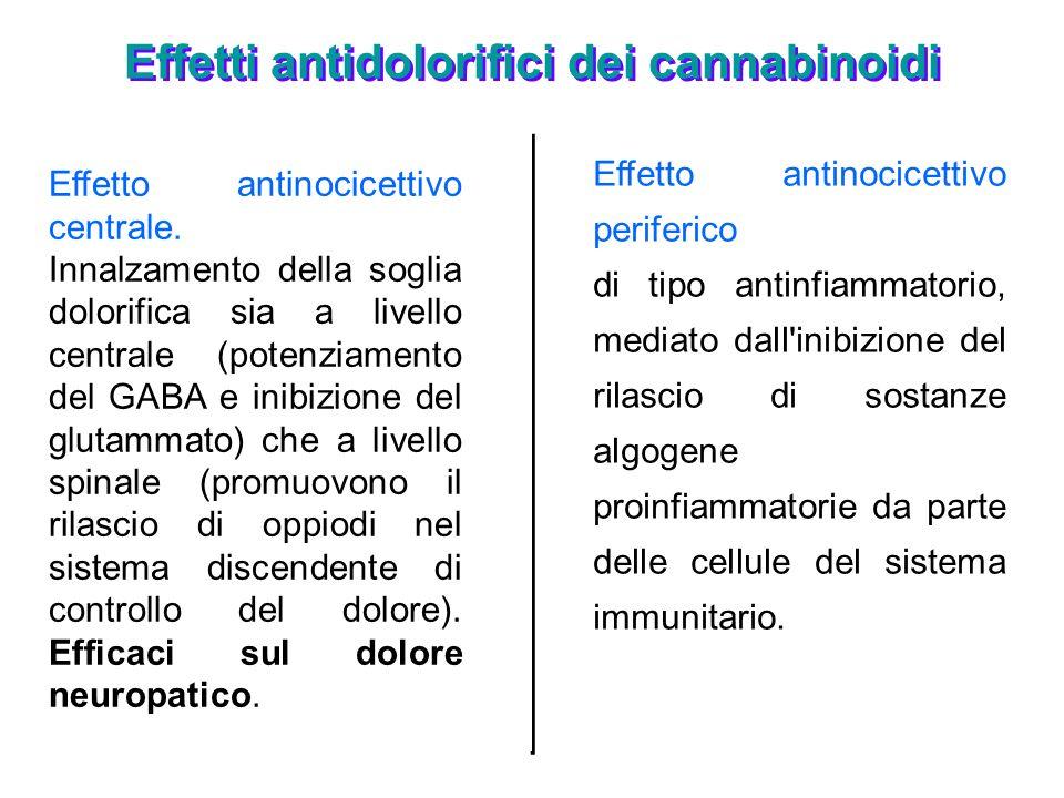 Effetti antidolorifici dei cannabinoidi