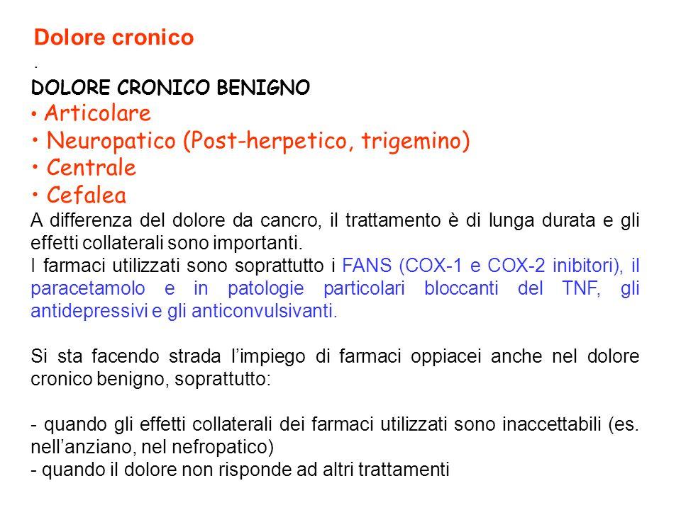 • Neuropatico (Post-herpetico, trigemino) • Centrale • Cefalea