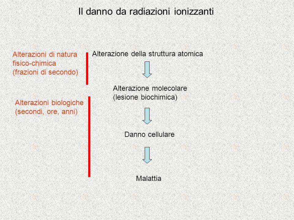 Il danno da radiazioni ionizzanti