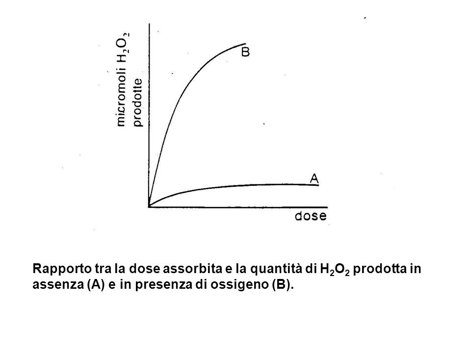 Rapporto tra la dose assorbita e la quantità di H2O2 prodotta in assenza (A) e in presenza di ossigeno (B).